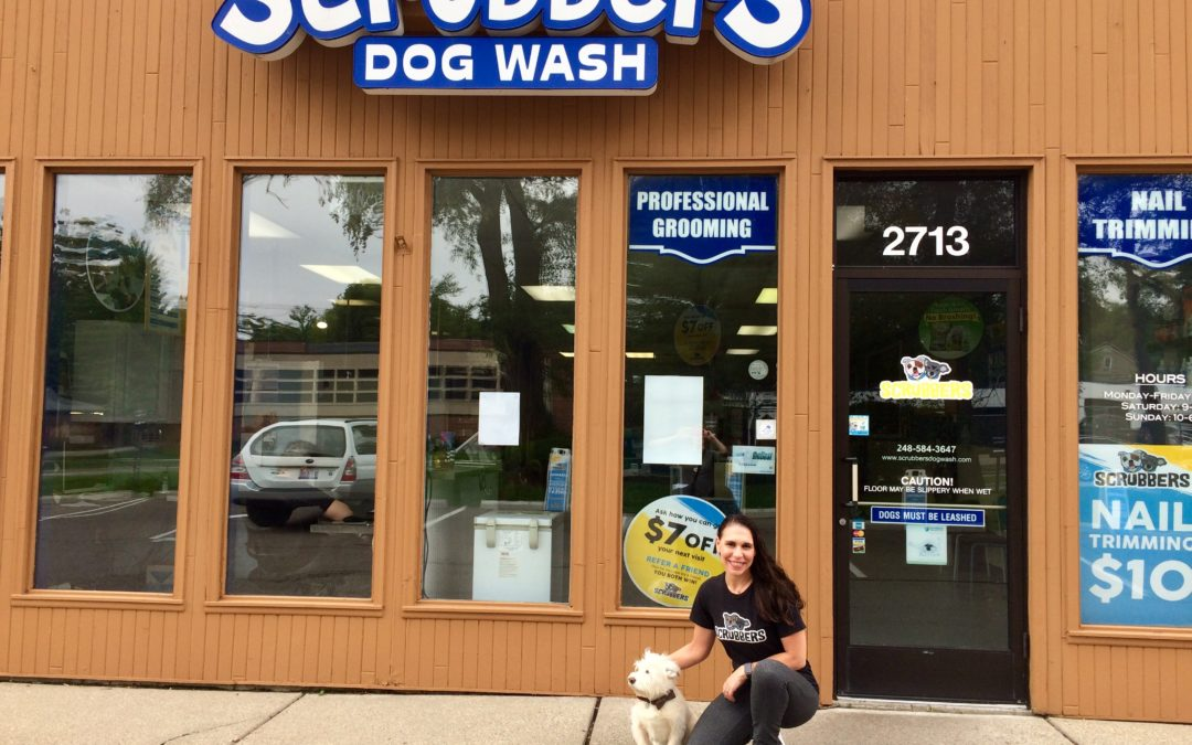 At Scrubbers, Dogs and Cats are Groovin' to the Grooming